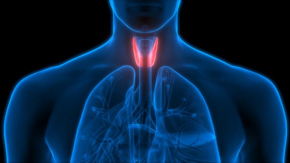 甲狀腺疾病多發於女性身上,原因未明。