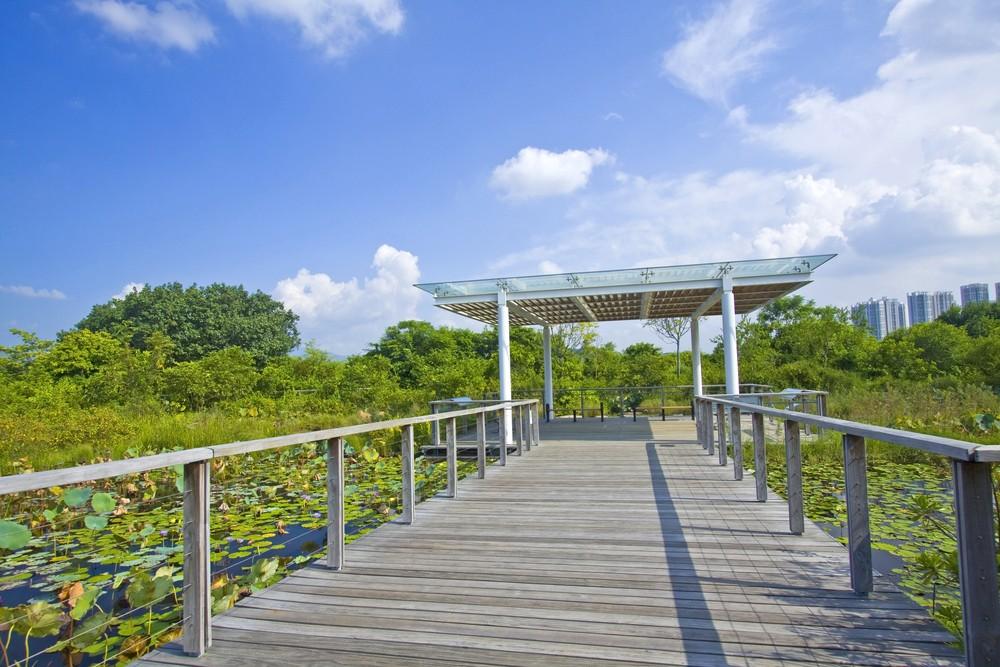 香港濕地公園明日起暫停開放。