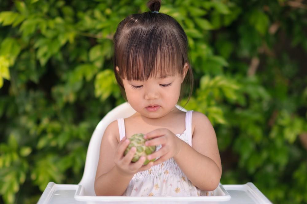 釋迦因幼果的外型像荔枝,又名「番荔枝」,而成熟的果實形似釋迦牟尼佛的頭型,因此也被稱為「佛頭果」。
