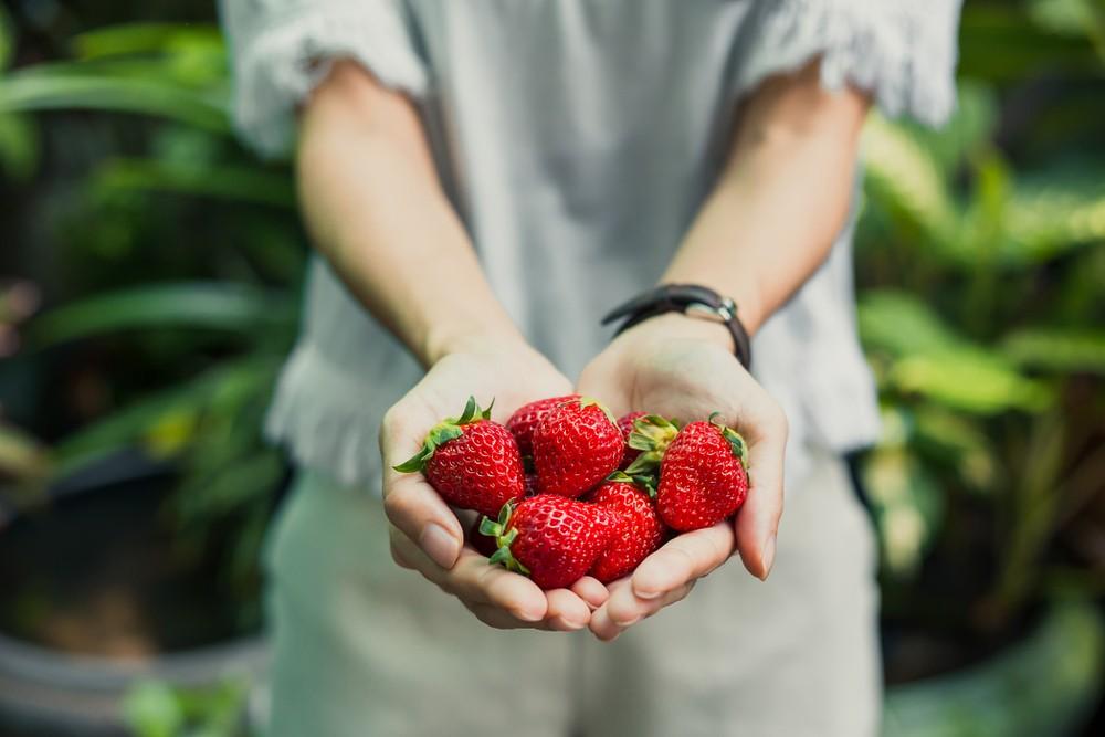 紅色蔬果對於維護視力有重大幫助。