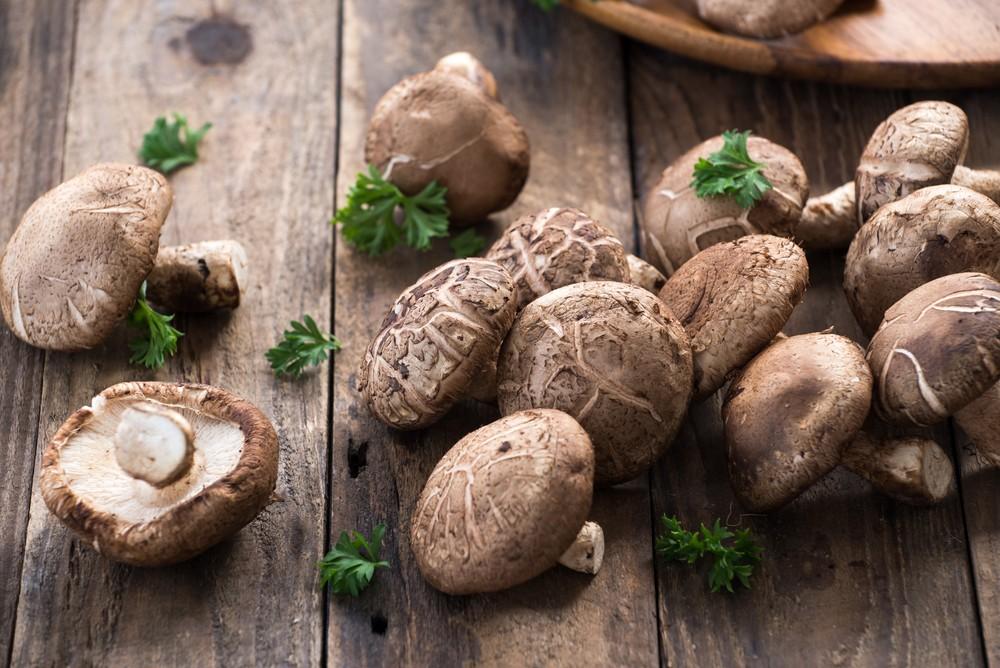 乾香菇買一包放一整年都沒問題。