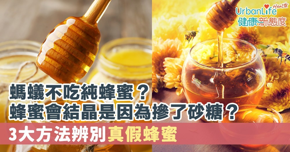 【蜂蜜成分】螞蟻不吃純蜂蜜?蜂蜜會結晶是因為摻了砂糖? 3大方法辨別真假蜂蜜