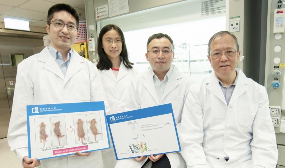 浸大領導的科研團隊研發了一種嶄新的抗皰疹病毒第四型(EB病毒)藥物,能選擇性地破壞從人類EB病毒產生的蛋白,令由該病毒引起的腫瘤縮小。