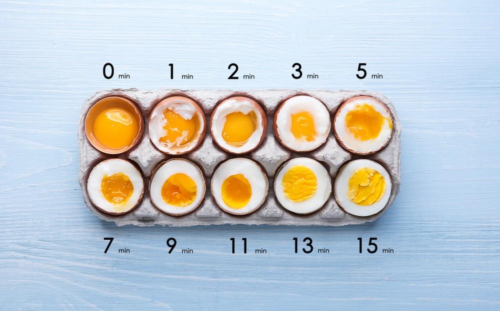 建議雞蛋煮熟了吃,因不熟的雞蛋感染沙門氏菌的機率會大增。