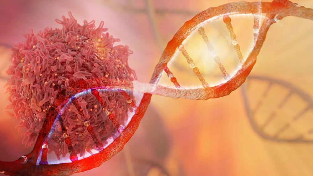 缺氧誘導因子改變了癌細胞代謝葡萄糖的方式,因此即便在沒有氧氣的條件下,仍然能被用來生產能量。