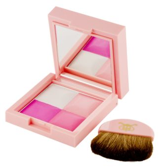 BERRY PICNIC BLUSHER
