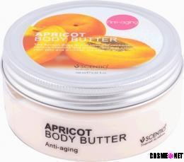 Scentio Apricot Body Butter