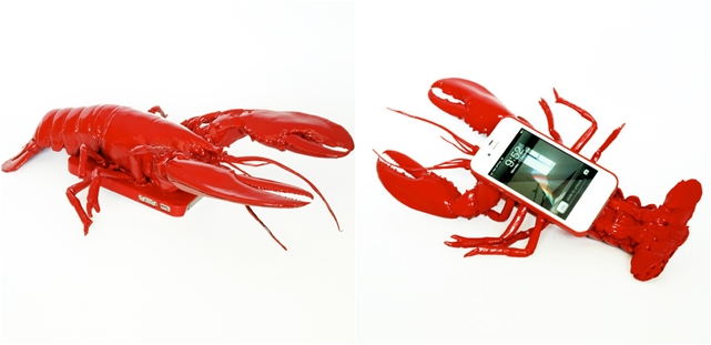 lobster case