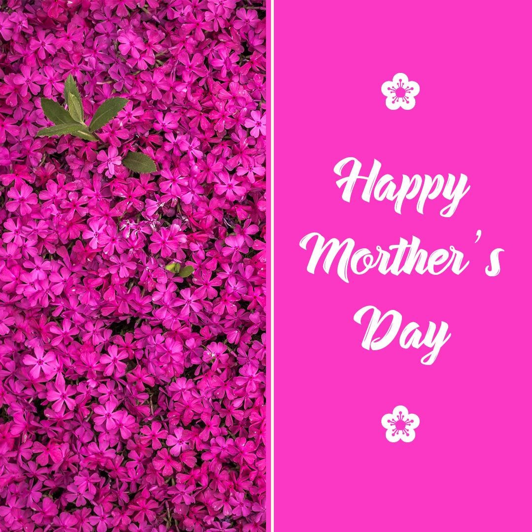 Mother's, happy, Facebook Ads, flyer, poster, Cooking, Mother's Day - Social Media Templatem,