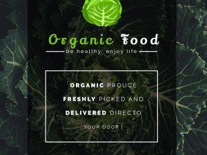 Organic Food – Social Media Template