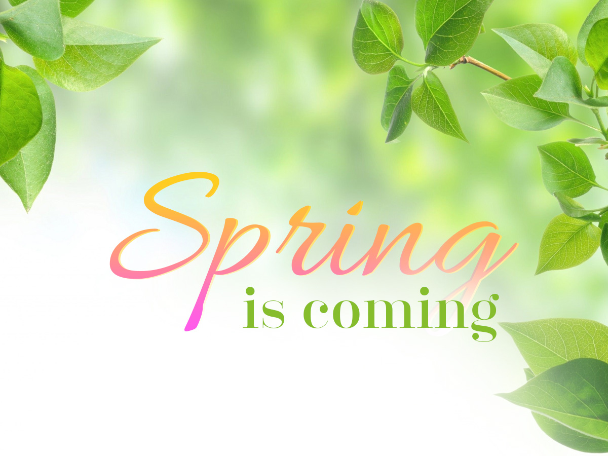 spring, style, pink, green, leaf, color, text effects, psd file, free download