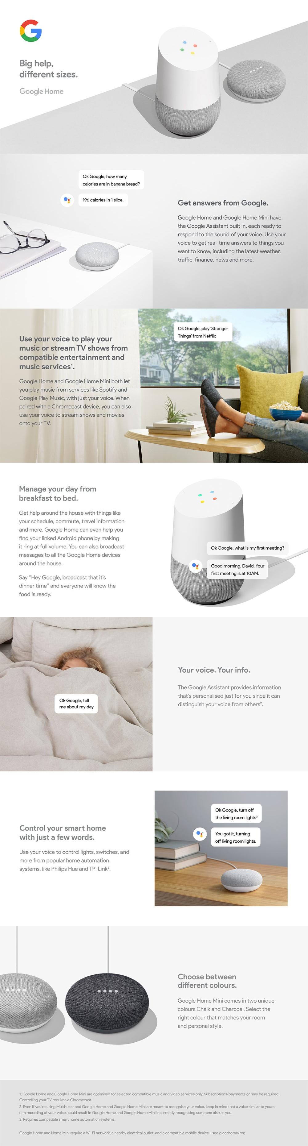 Google Home Mini SG (Charcoal)