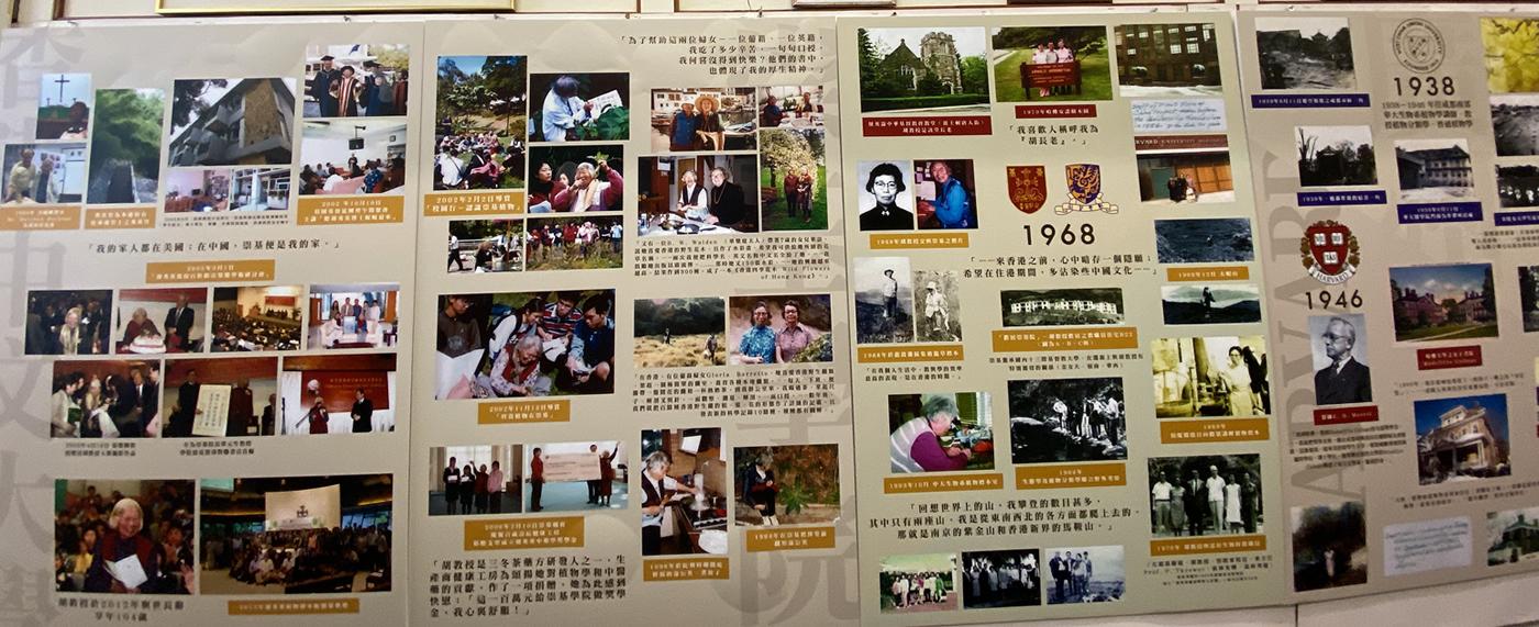 About Professor Shiu-ying Hu