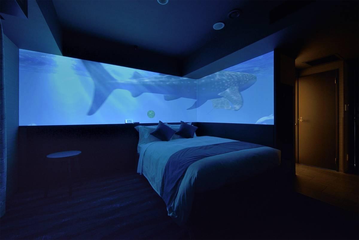 room_concept