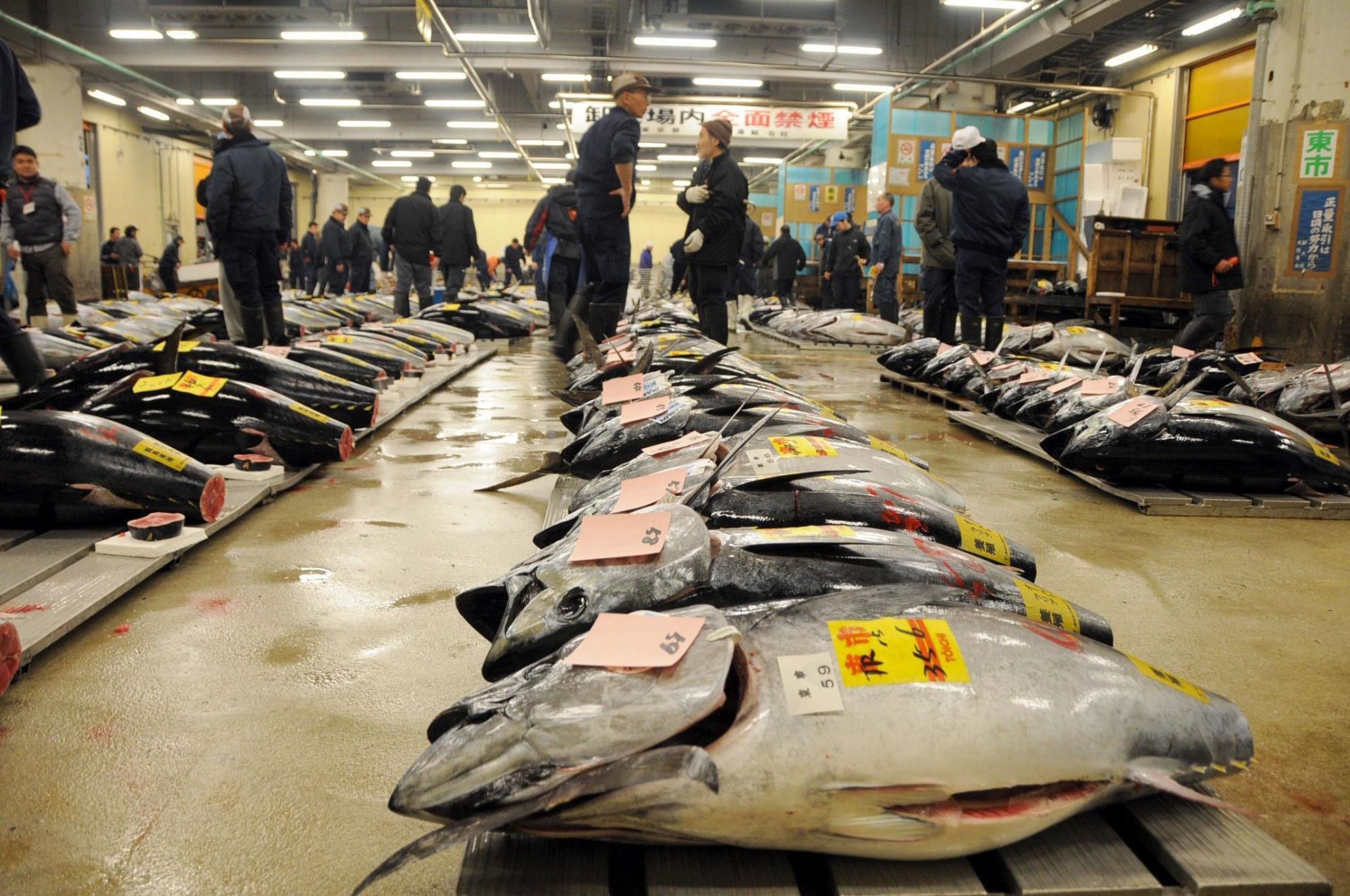 รูปจาก https://www.japantimes.co.jp