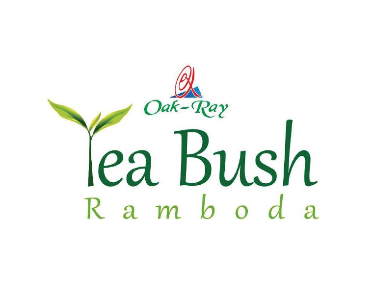Tea-Bush