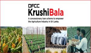 DFCC Bank unveils 'Krushibala' loan scheme to enhance local Agri businesses