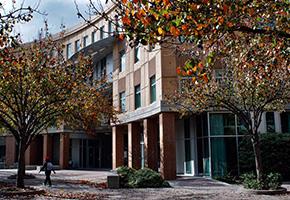 奧瑞岡州立大學