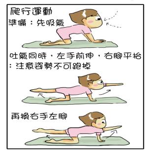 犬鳥式舒緩下背痛