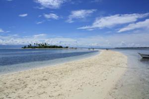 Virgin Island(處女島)