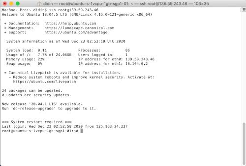 Spring Boot MySQL Nginx Gitlab-CI Docker on VPS - img 6