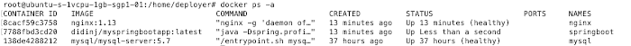 Spring Boot MySQL Nginx Gitlab-CI Docker on VPS - img 14
