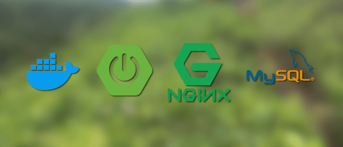 Spring Boot MySQL Nginx Gitlab-CI Docker on VPS