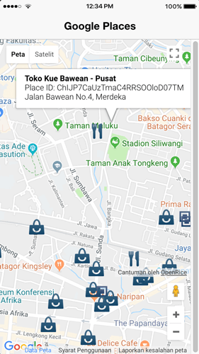 Places Search using Ionic 3, Angular 5 and Google Maps and Places APIs - Places Details