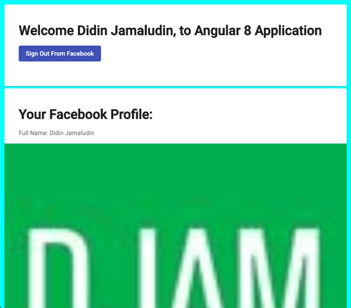 Angular Facebook Login - Facebook Profile