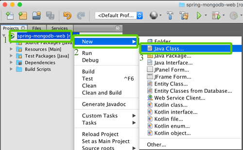 Spring Boot, MVC, Data and MongoDB CRUD Java Web Application - Create Java Class