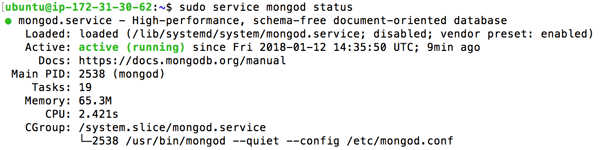 Setup Node.js, Nginx and MongoDB on Ubuntu 16.04 for Production - MongoDB Status