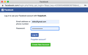 Vue.js 2 Tutorial: Facebook Login Example - Facebook Login Web