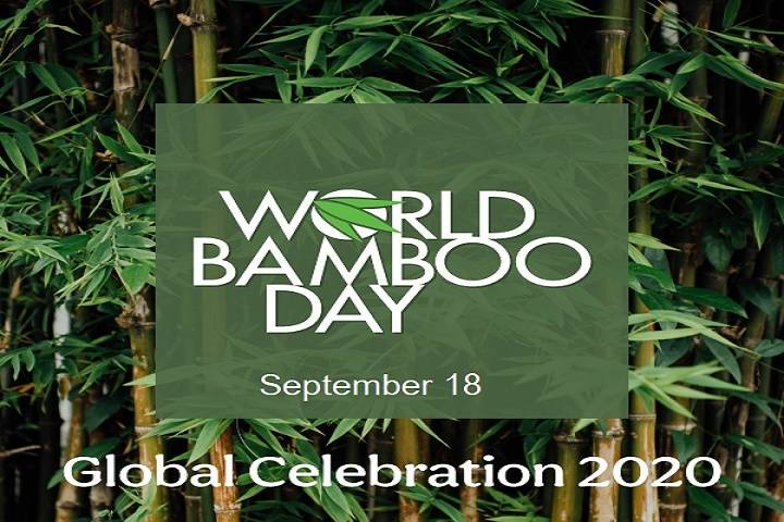explained : world bamboo day