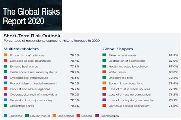 2020 world risk index