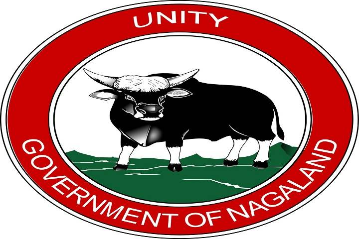 government of nagaland to establish