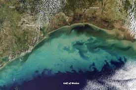 dead zone expanding in gulf of