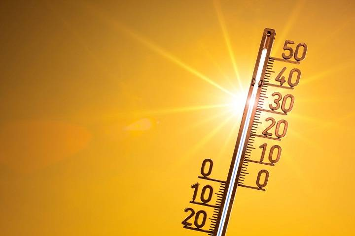 2019 is hottest year ever: un report