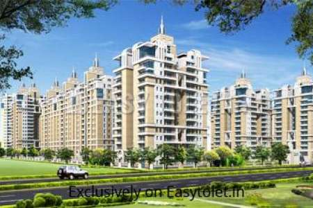 3 BHK Apartment For Rent In Sector 137