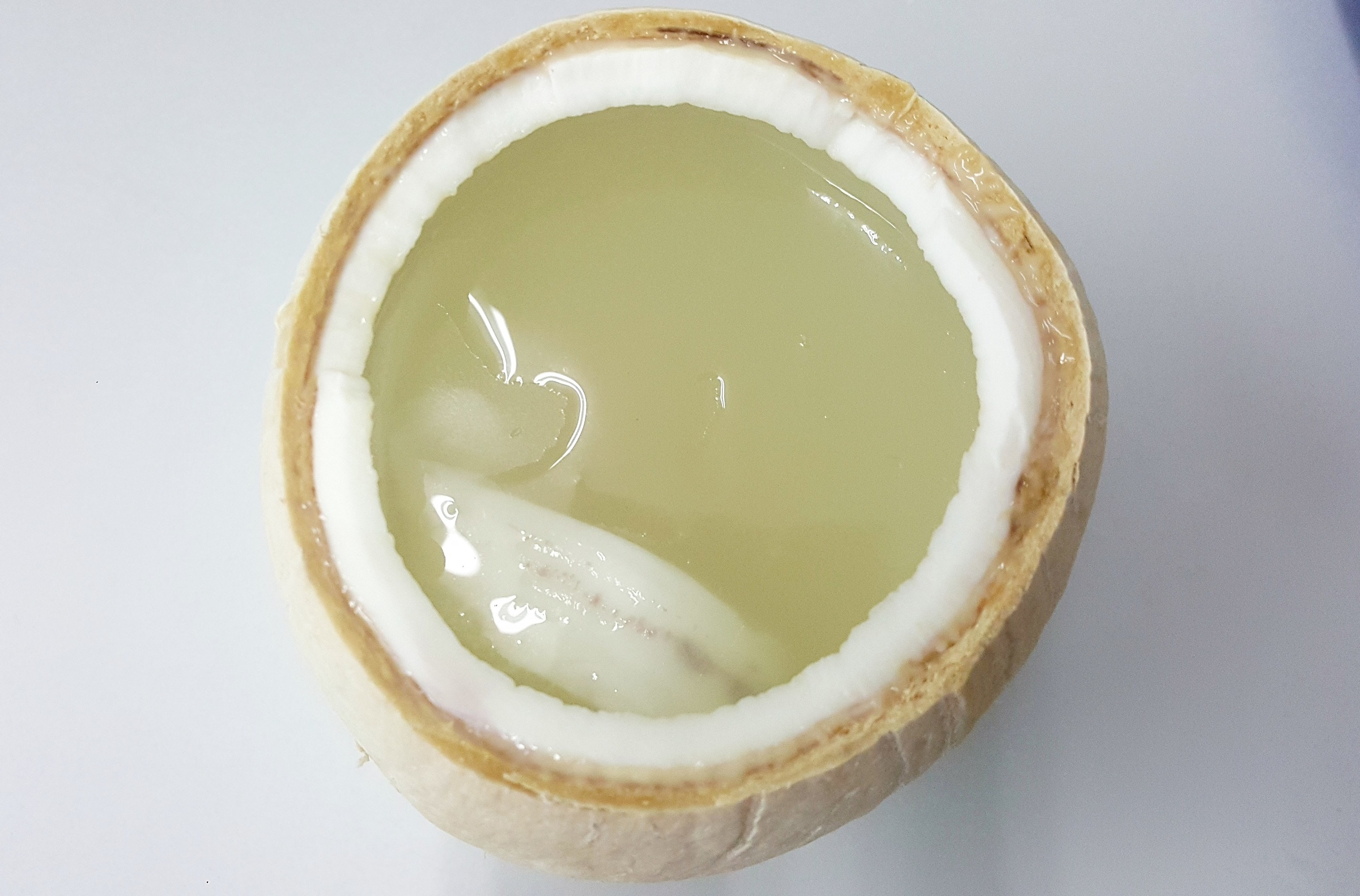 Coconut Jelly C.jpg