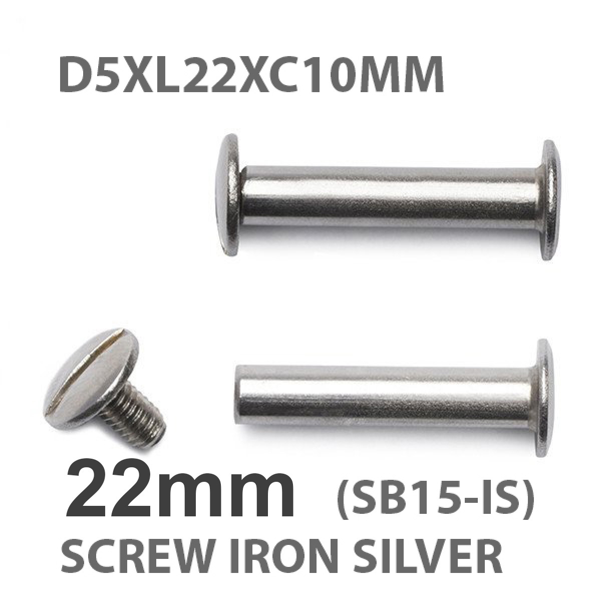 22mm screw silver.jpeg