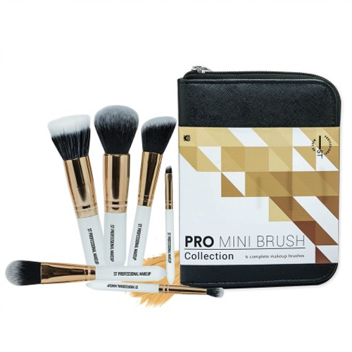 pro mini brush.png