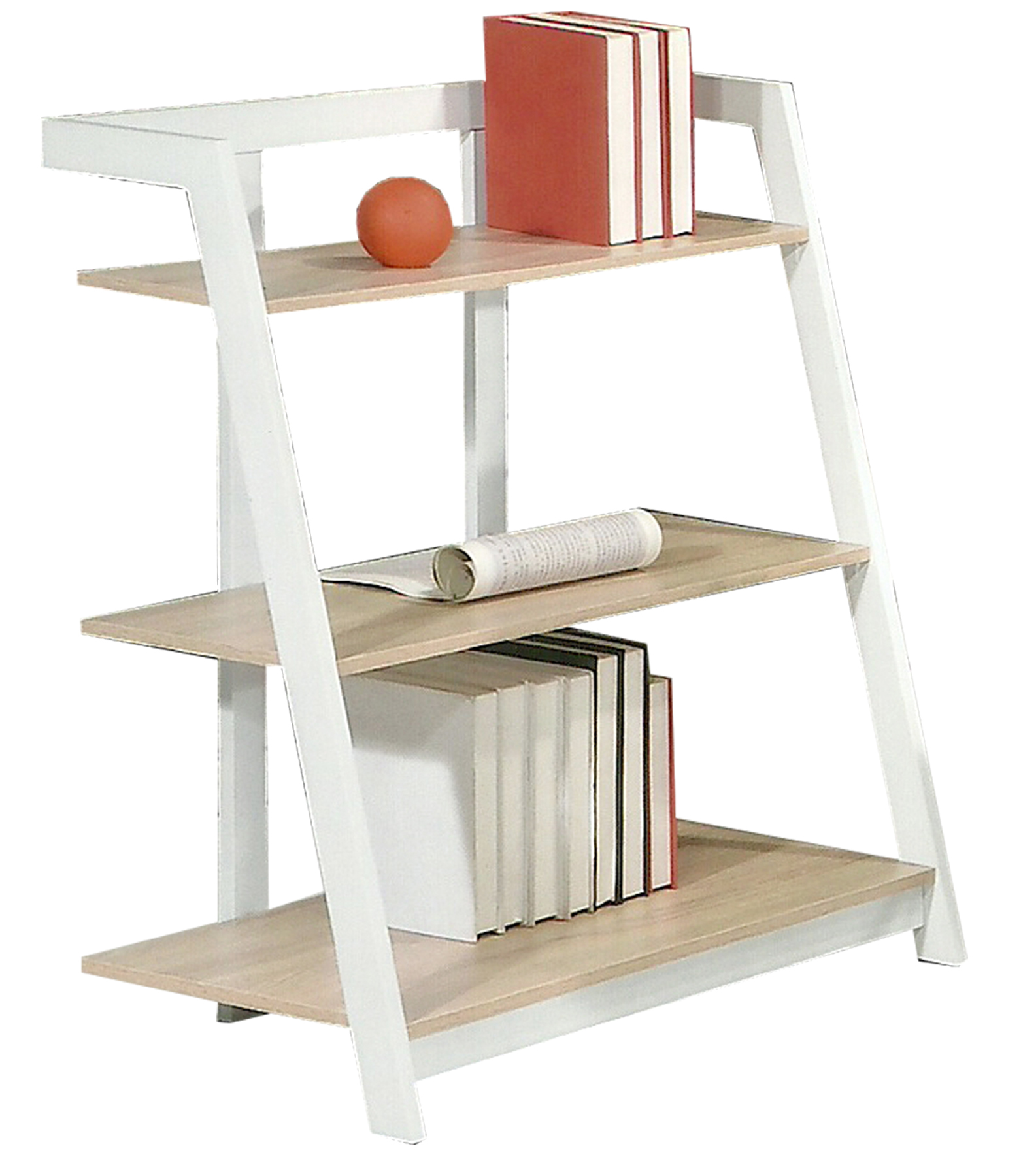 book shelf JN 2578B3.jpg