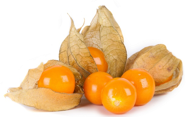 ANDEAN GOLDEN BERRIES : Revealing the top 3 benefit of this superfood
