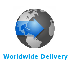 worldwide delivery online shopping