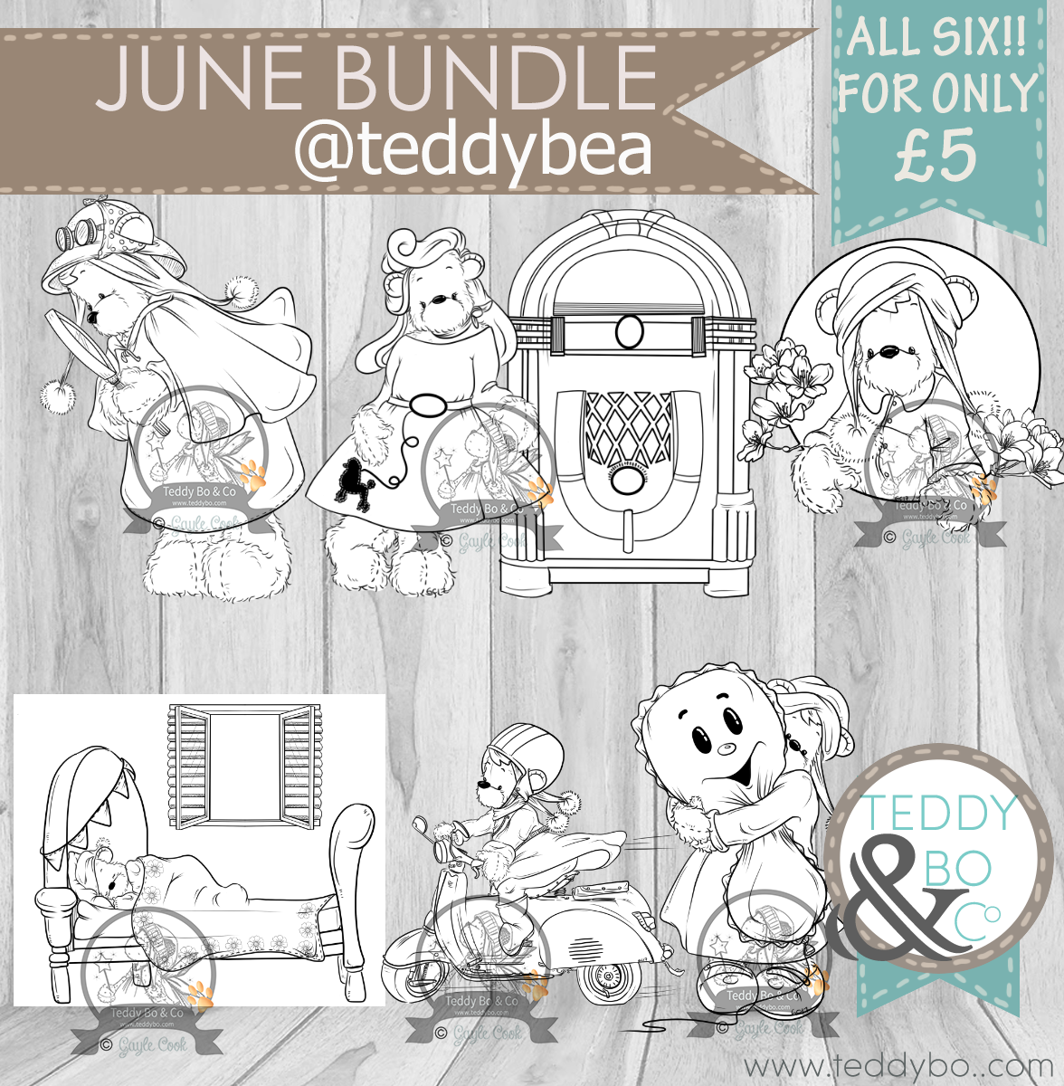 TEDDY BEA June product shot.png