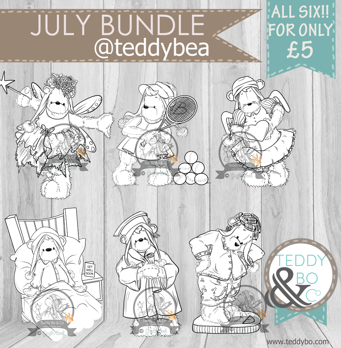TEDDY BO July product shot.png