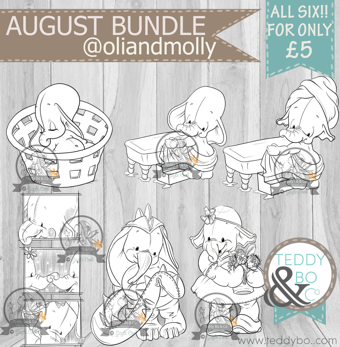 AUGUST_OLImOLLY_BUNDLEPRODUCT SHOT.png
