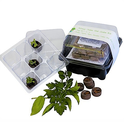 "<img src=""herb garden kit.jpg"" alt=""Culinary Herb Garden Kit with Seedlings, Jiffys and fresh Herbs"">"