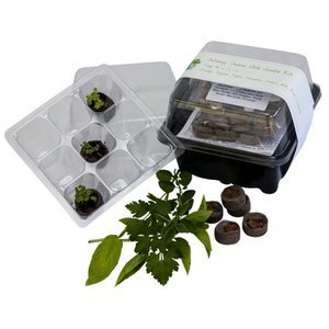 Culinary Herb Kit 1.jpg