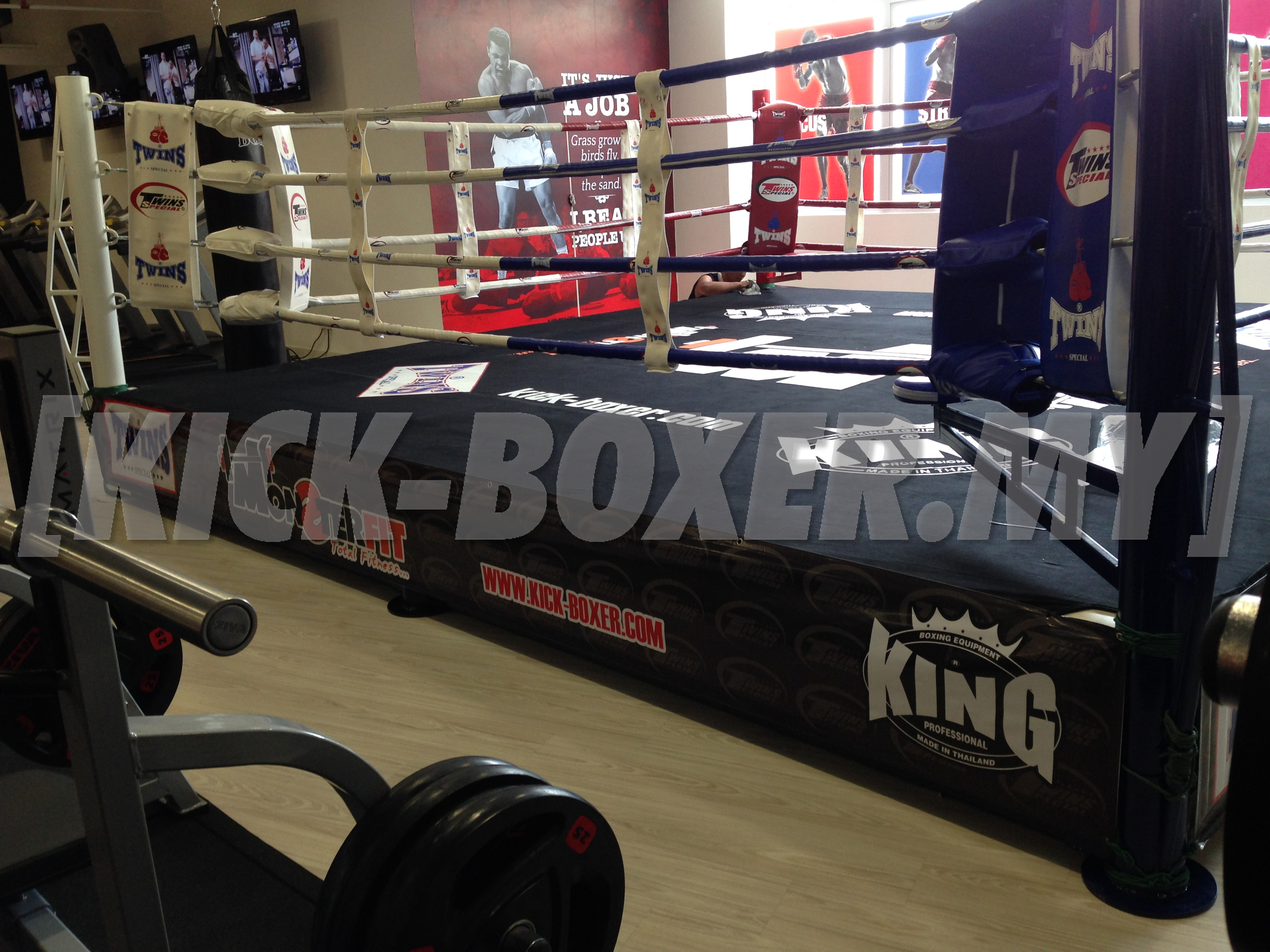 TWINS_KING-PRO_Boxing-Ring_Training_Monster-FIt-Gym-BAC-PJ2.jpg